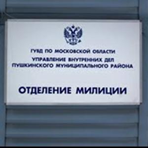 Отделения полиции Салтыковки